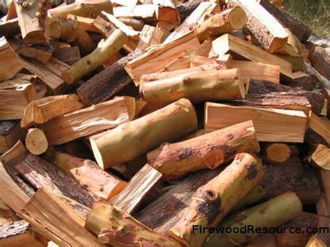 madrone woodwork pacific madrone firewood