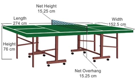 everything you need to about ping pong table dimensions