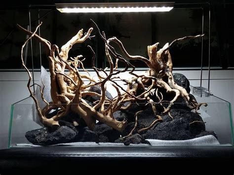nano scape root hardscape  planted tank design