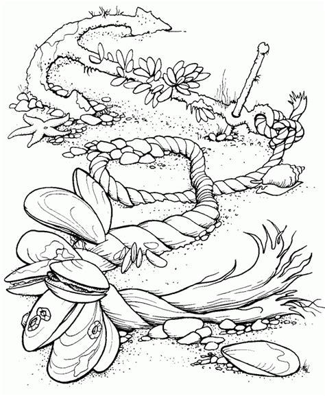 hard coloring pages ocean ocean coloring pages for adults coloring home