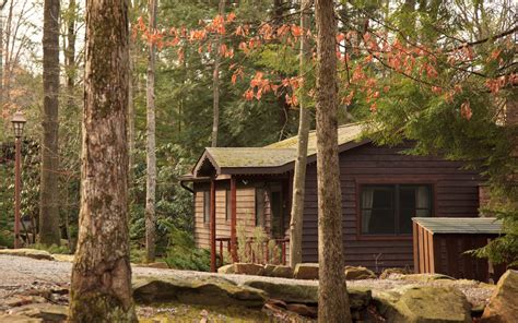 Cook Forest Cabins by Gallery Black Cabins