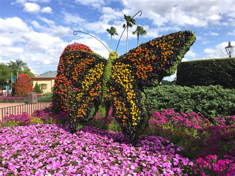 Epcot International Flower And Garden Festival Look At Flower And Garden Festival