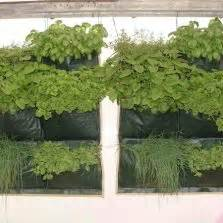 planter bag tomato print 15 liter bibitbunga