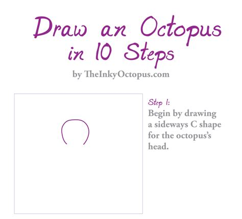 how to avoid my in ten simple steps pocket edition books how to draw an octopus in 10 steps the inky octopus