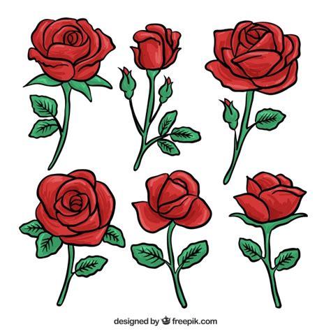 imagenes de rosas minimalistas set von roten rosen hand gezeichnet download der