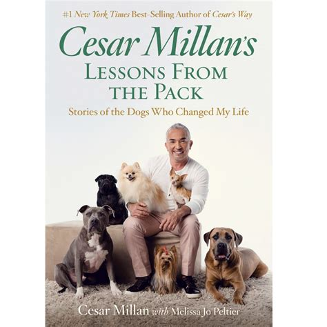 cesar millan s cesar millan s lessons from the pack national geographic store