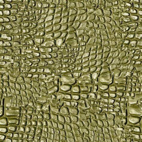 Alligator Skin by Alligator Skin Free Stock Photo Domain Pictures