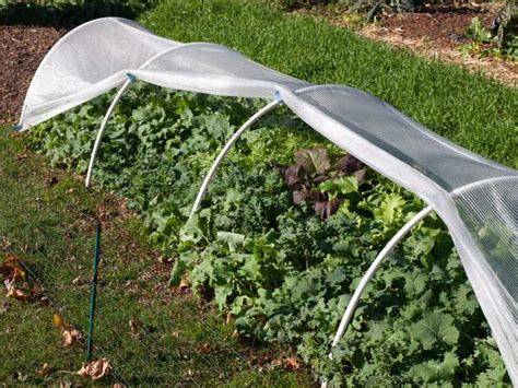 Protective Devices For Fall And Winter Vegetable Gardens Vegetable Garden Row Covers