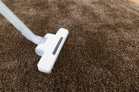 best vacuum for carpet 5 best vacuum for shag carpet complete guide and reviews