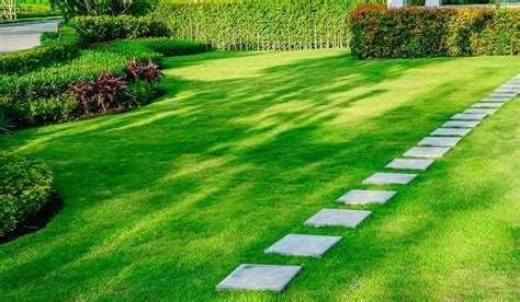 simple landscaping ideas backyard design ideas and tips