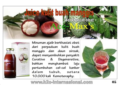 Obat Ace Maxs Hernia obat herbal paling mujarab obat herbal penyakit kelenjar