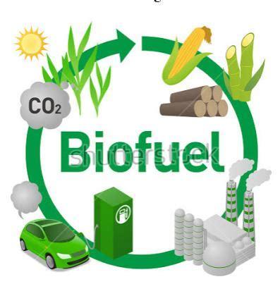 biofuel adalah biofuel sebagai alternatif energi terbarukan lingkarandunia