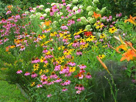 butterflies and hummingbirds in your garden surf n beach scene magazine