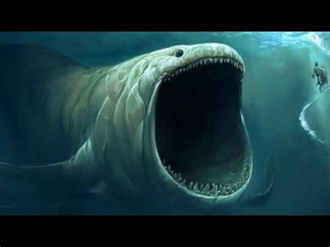 saviez vous que ..? #43 : le plus gros poisson !! youtube