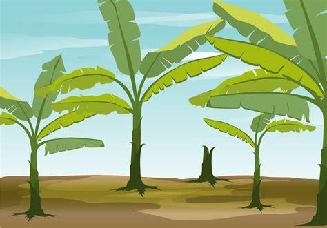 wallpaper of banana tree banana tree vector background download free vector art