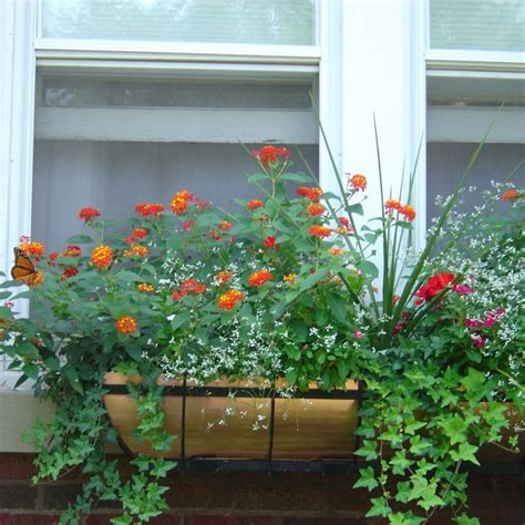 copper window boxes planters window planter ideas copper window box hooks