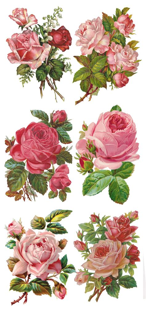 printable rose stickers young beautiful red and pink roses collage pinterest