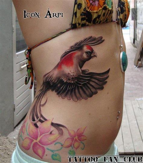 paradise tattoo designs bird of paradise inspirations