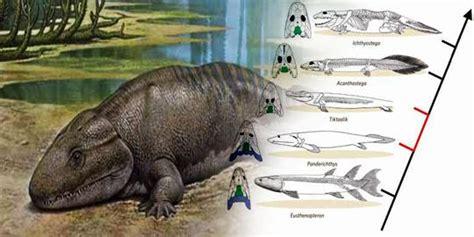 peneliti berhasil buat gambar 3d hewan kaki 4 pertama bumi merdeka