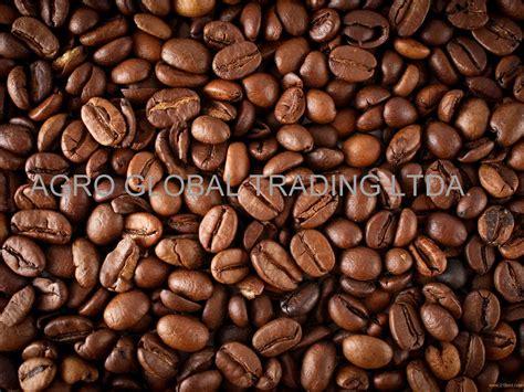 Green Bean Black Honey Specialty Arabica Coffee arabica green coffee beans products brazil arabica green coffee beans supplier