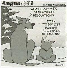 new year s humor on pinterest new year jokes