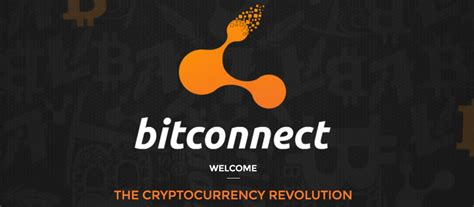 bitconnect scam or not bitconnect review and results scam bitcoin builder
