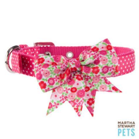 martha stewart collar martha stewart pets 174 floral collar from pet smart