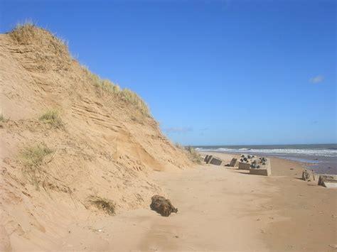 sand beaches beach sand dunes