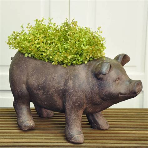 Pig Planter by 1000 Images About Gardens On Window Boxes