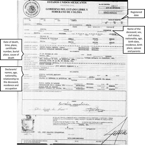 translation of mexican birth certificate to template best photos of mexican birth certificate translation