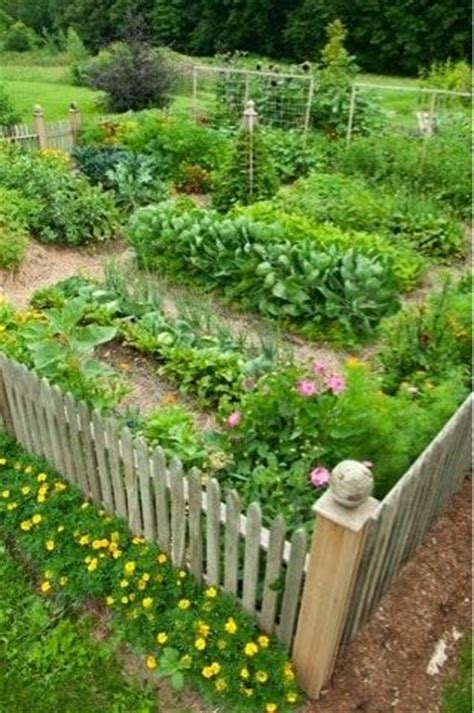 veggie garden layout ideas best 25 cottage garden design ideas on front
