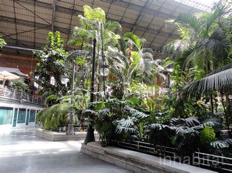 Indoor Botanical Gardens Madrid S Atocha Station Doubles As An Indoor Botanical Garden And Turtle Sanctuary Atocha