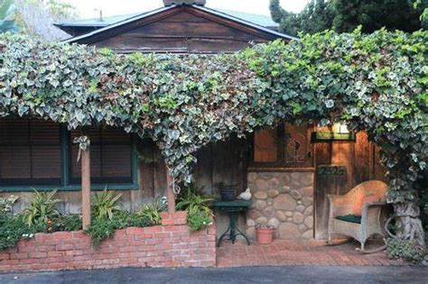 Redwood Hollow Cottages by Harbor Seals Are A Block Away Picture Of Redwood Hollow La Jolla Cottages La Jolla