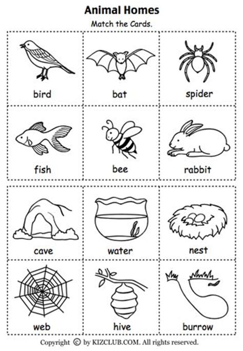 printable animal habitat cards here s a set of cards for matching animals to their homes
