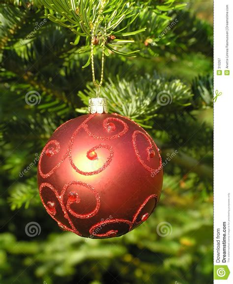red christmas ball hanging on a christmas tree stock image