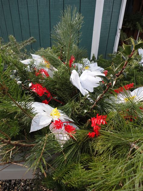 grave blanket white farms choose and cut your own christams trees