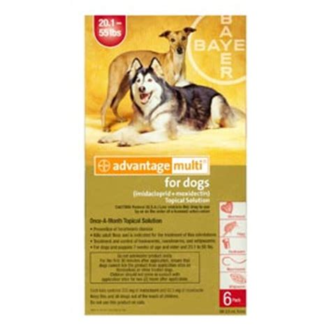 advantage for dogs 55 lbs 6 pack advantage multi for dogs 20 55 lbs 6 month supply vetdepot
