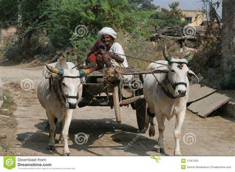indian cart bullock cart india editorial stock photo image of