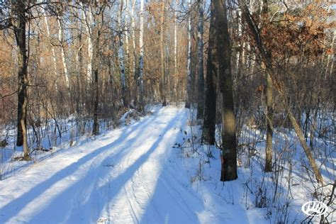 Wi Small Search Diverse Small Acreage With Potential In Central Wisconsin Whitetail Properties