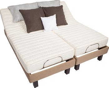 dual adjustable beds world s lowest prices on dual kingsplit electric