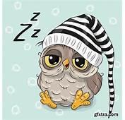 151 Best PlaatjesUilen Images On Pinterest  Owl Owls