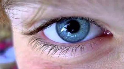 imagenes reales de ojos por que hay personas con ojos azules youtube
