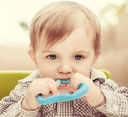 Dr Brown Teether Flexees Blue buy dr brown s flexees a shaped teether at mighty ape nz