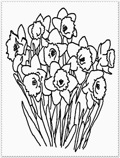 free realistic coloring pages of flowers realistic flowers coloring pages