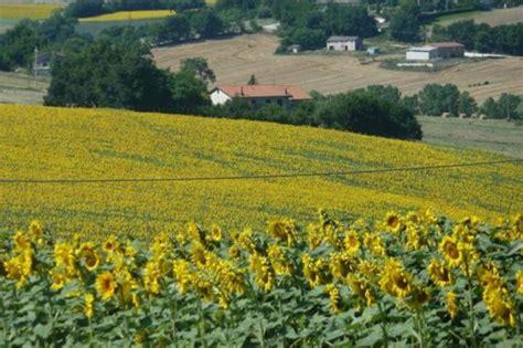 agriturismo il giardino degli ulivi il giardino degli ulivi appignano macerata area events