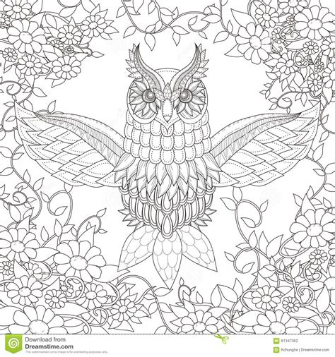 beautiful owl coloring page stock vector illustration