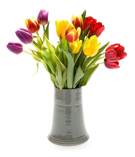 reasons to a vase of flowers in decors