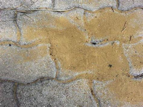 pavimenti stati roma pavimenti per esterni pavimenti a roma