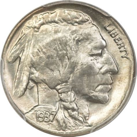 buffalo nickel metal pinterest