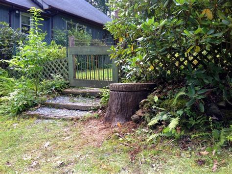 Comfort Keepers Langley by The Best 28 Images Of Boone Tree Stump Well Cover For Of